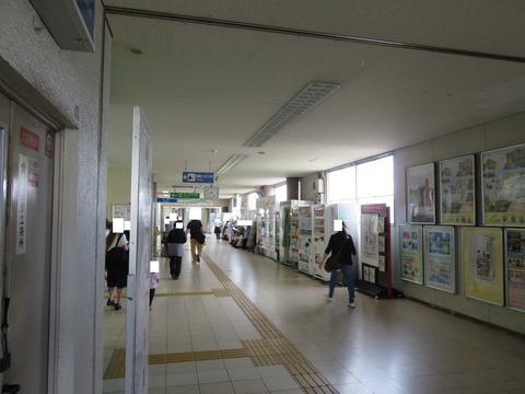 IMG_2166-1