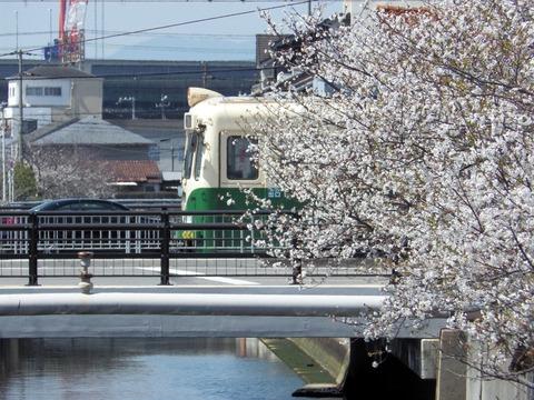 阪堺電軌 御陵前0315_result