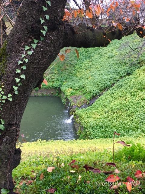 千鳥ヶ淵のダム