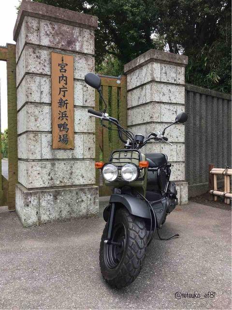 ZOOMER原付ツーリング(宮内庁新浜鴨場)