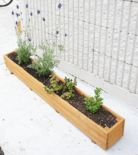 木製プランター ナチュラル ラベンダー ミント寄せ植え