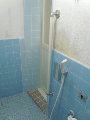 浴室手すり(1)