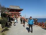 宮崎の鵜戸神社初詣