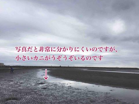 IMG_9019