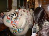 中華街獅子舞乱入
