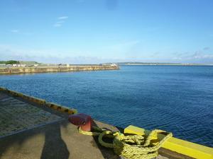 5早朝の港