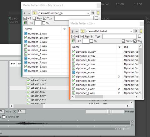 MediaFolder01