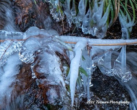 210109凍2