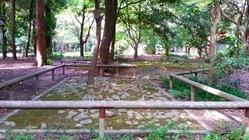 下賀茂神社の古代祭祀場