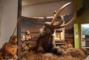 旧石器時代の人びとの狩猟の様子