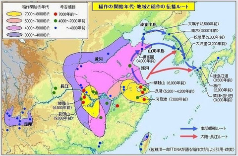 稲作の開始年代・地域と稲作の伝播ルート