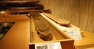 鳥浜貝塚の丸木船