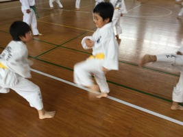 TFTC_renshu068