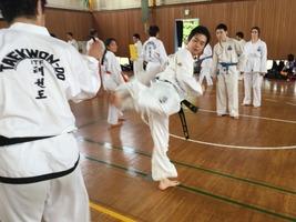 TFTC_renshu094