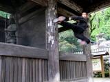 筑波神社1