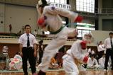 8回埼玉県 W.Yoshi