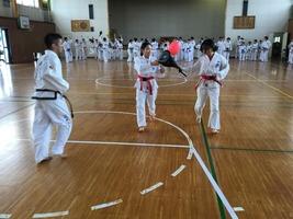 TFTC_renshu171