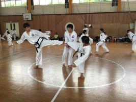 TFTC_renshu062