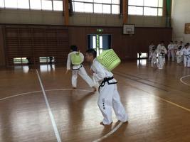 TFTC_renshu175