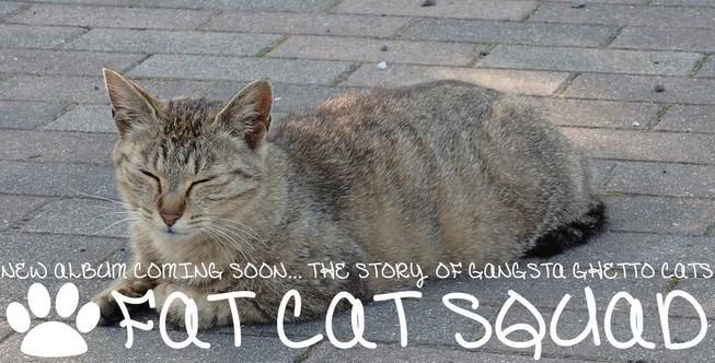 FAT CAT SQUAD バナー小
