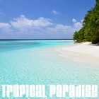 Tropical Paradise140