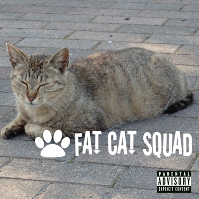 400 FAT CAT SQUAD