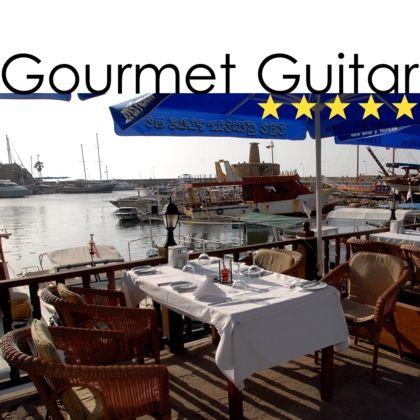 Gourmt Guitar (five-star) 420