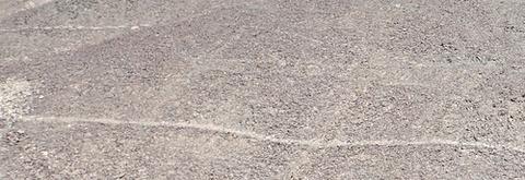 ナスカの地上絵24個、新たに発見 「リャマ」とみられる動物の絵…山形大
