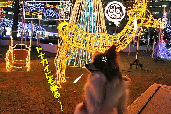 光の馬車★☆★(後篇) 16