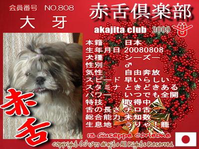 808-taiga-2009aka