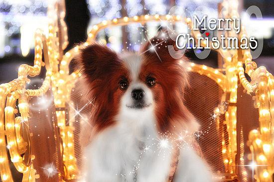 クリスマス★カード 01