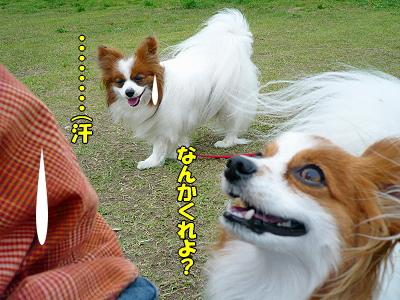 春舌倶楽部♪�