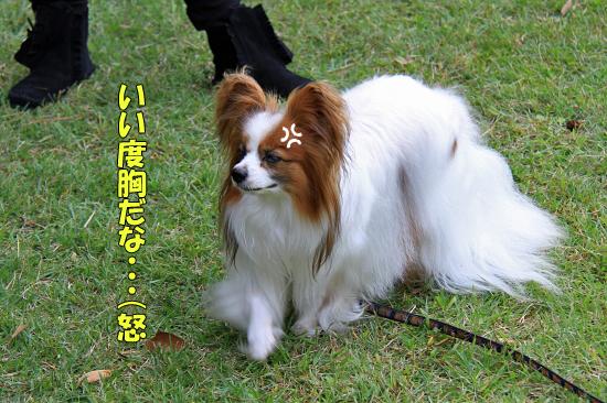 【サザオフ2011】 part4 12