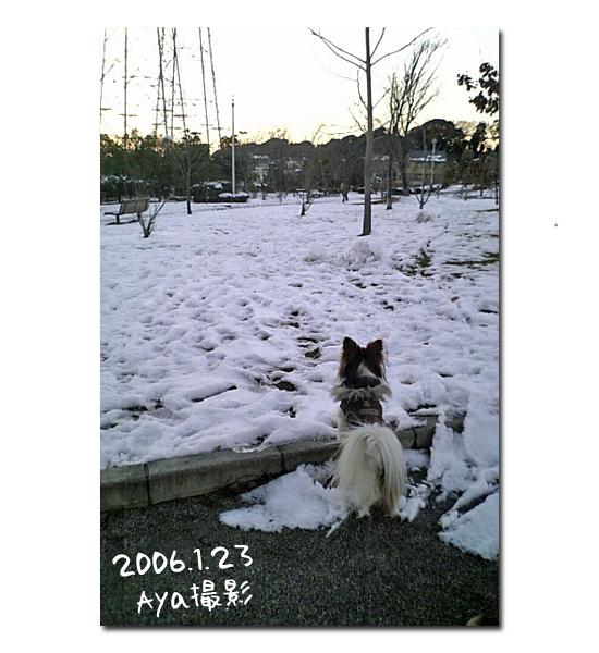 雪の魔法 03