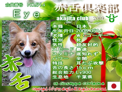 satuki2009_514_eye