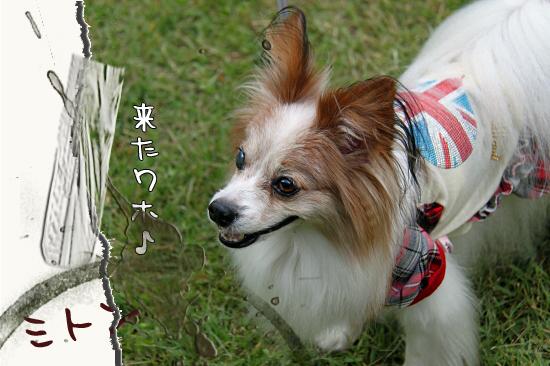 【サザオフ2011】 part5 02
