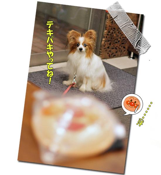サザちゃん★お祭りレポ(前篇)08