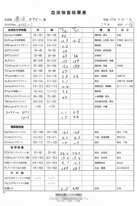 検査結果の語るモノ 08  2012_0211_血液検査