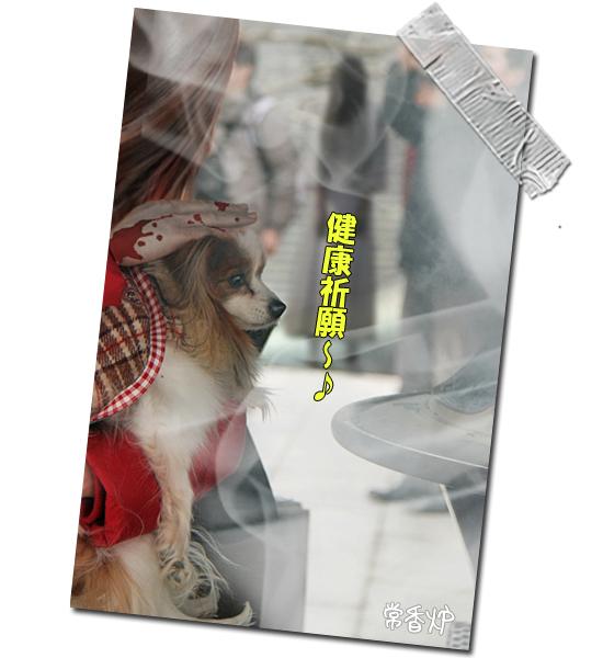 成田山★リベンジ 15