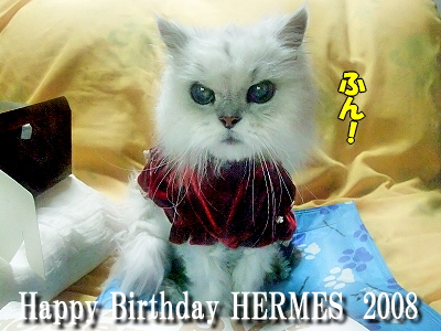 Happy Birthday HERMES 2008�