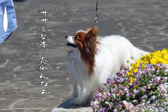 【Wan 2011】(中篇) 14