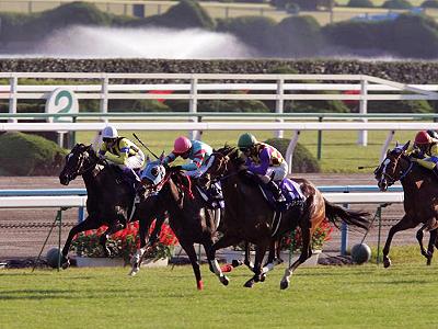 秋舌倶楽部2008�
