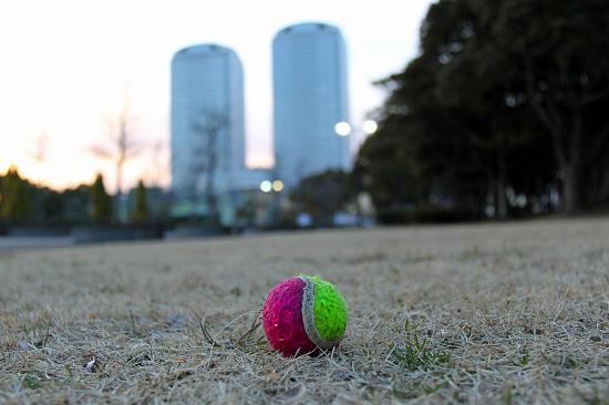 桜を見に行こう♪ 02