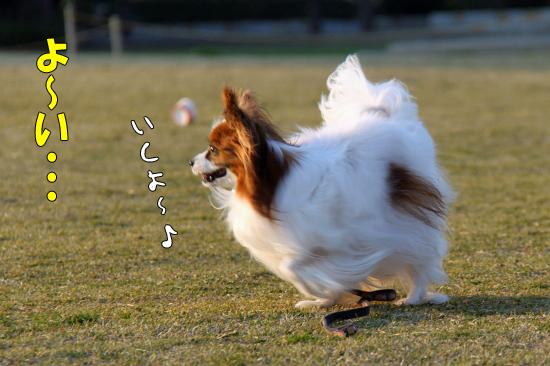 走らせてみた★ 02