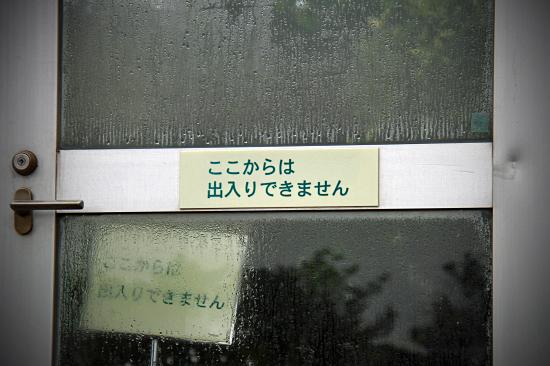 お散歩レビュー(後篇) 11