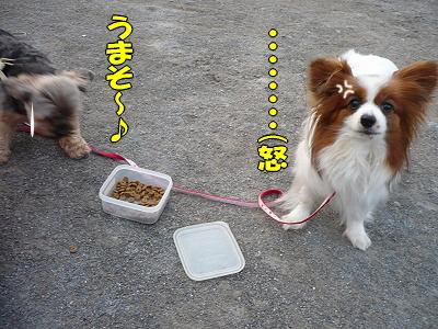 カイくんの誕生日★�