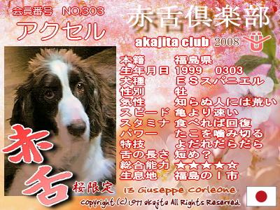 303-axel-2008saku�