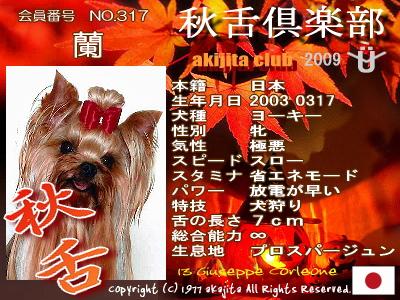 aki2009-317-ran
