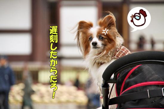 成田山★リベンジ 04