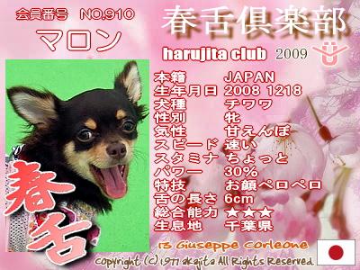 haru2009-910-malon